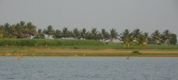 bhigwan01.jpg