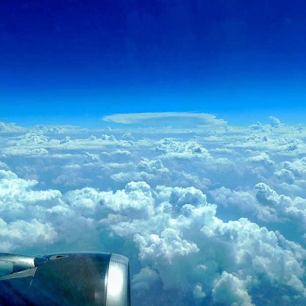 flight_IG-01.jpeg