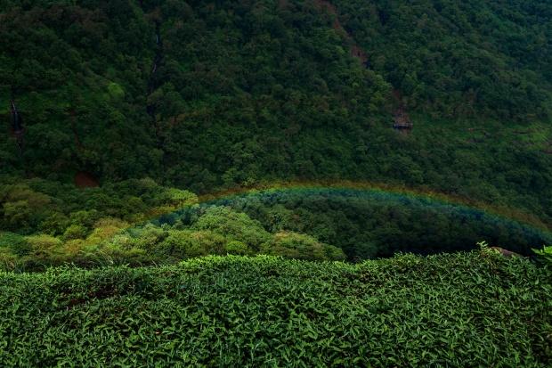Malshej_Rainbow